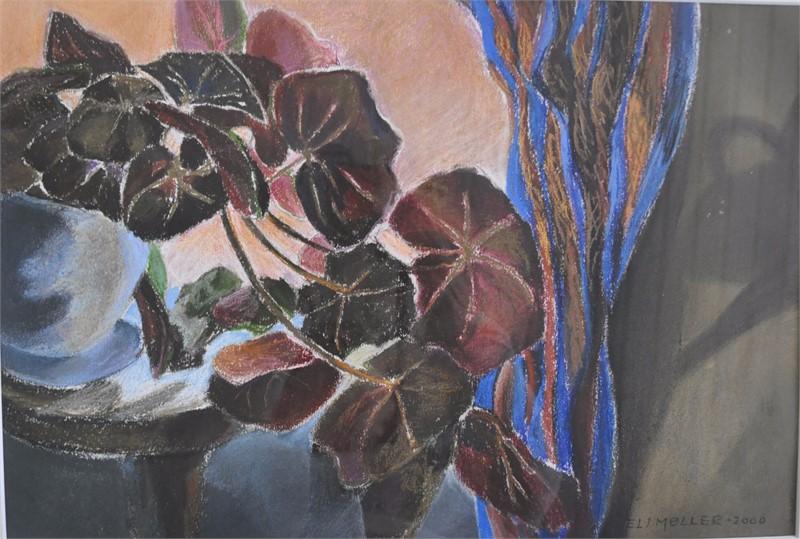 Begonia i vinduet 45x55 3.800,-